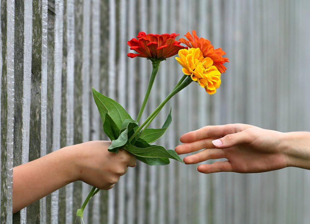 פרח כמתנה לאישה