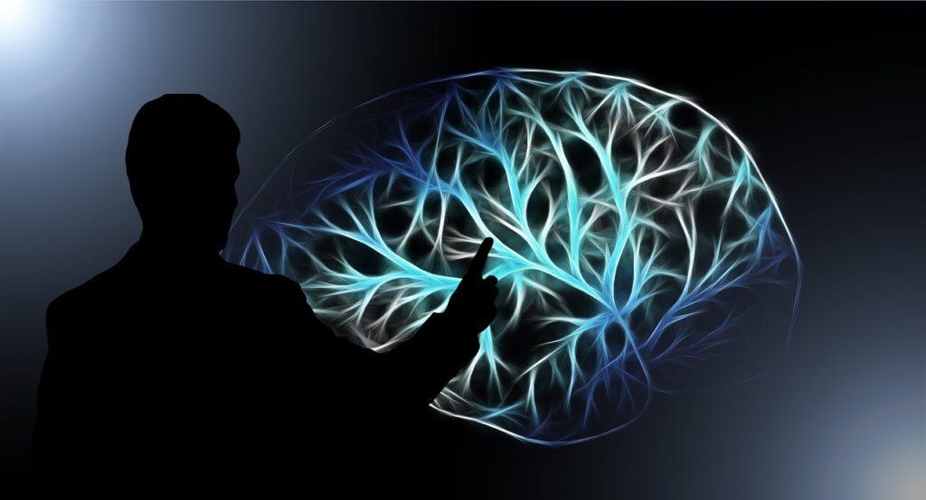 איש מצביע על מוח